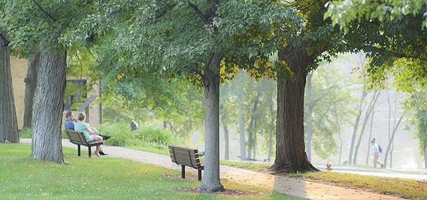 Khuôn viên trường rộng rãi, rợp bóng cây.