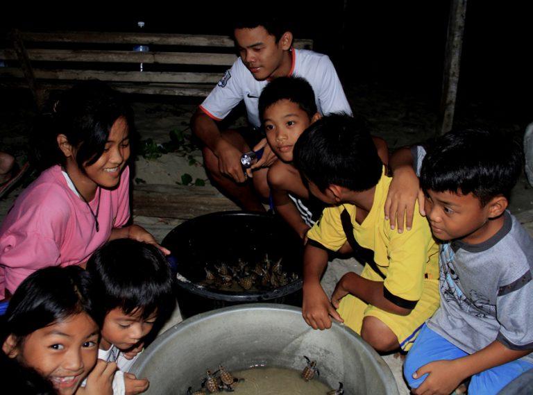 Trẻ nhỏ trong làng giữ rùa nở chờ sáng để thả về biển