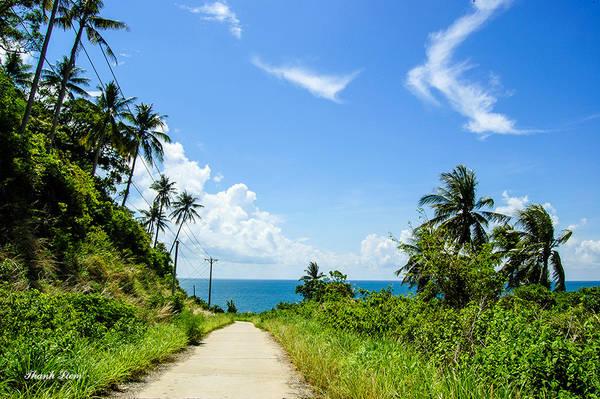 Với những bãi biển tự nhiên, duyên dáng và xinh đẹp phản chiếu giữa đại dương bao la, Hòn Sơn hiện lên như một hòn ngọc lấp lánh sắc màu; được bao phủ bởi những rặng dừa ngút ngàn chạy dọc theo bờ biển mang một dáng vẻ hoang sơ, chưa có dấu vết của sự khai phá.
