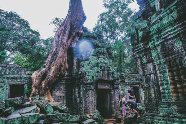 Rễ của những cây cổ thụ mang dáng vẻ kỳ quái bao trùm gần như toàn bộ ngôi đền, tạo nên một sự hấp dẫn riêng
