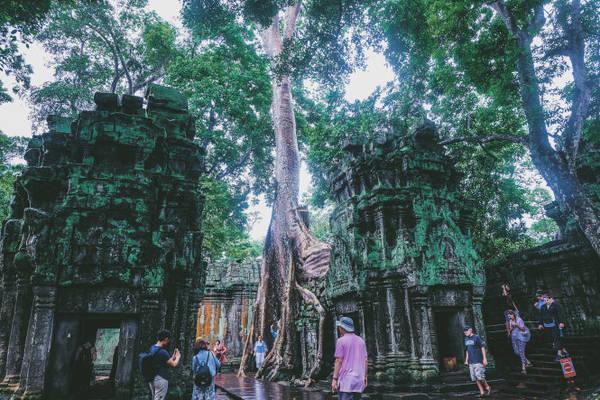 Một góc độc đáo tại đền Ta Prohm
