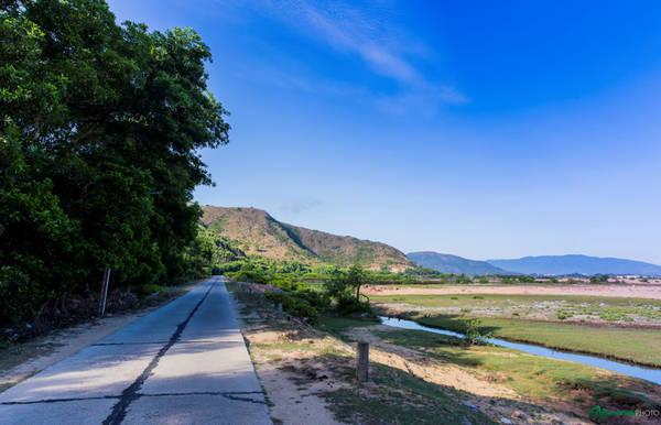 Ngày hôm sau chúng tôi đến với Nhơn Hải, một xã ngoại ô khác của Quy Nhơn, nằm ở hướng ngược lại với Nhơn Lý, cách trung tâm chừng hơn 20 km. Đường vào Nhơn Hải đi qua những con đường đèo rất đẹp và ấn tượng.