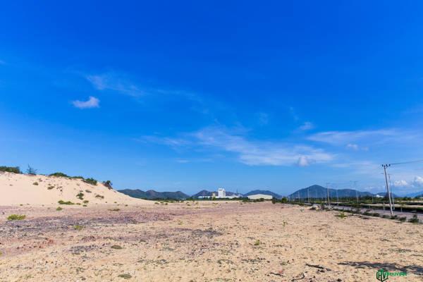 Chúng tôi đi theo QL19B hướng về xã Nhơn Lý. Con đường trải nhựa rất đẹp, phẳng lì băng qua những cồn cát nóng bỏng.