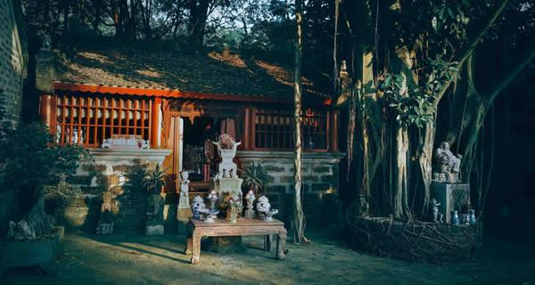 Sự tài hoa của họa sĩ Thành Chương còn được thể hiện trong việc xây dựng tại Việt phủ một hội trường rộng lớn với hàng chục bộ bàn ghế cổ. Phía trước hội trường là khu nhà Lò Mạc Hương rất mộc mạc, giản dị với những cây phượng vĩ xum xuê, xanh tốt được trồng xung quanh.
