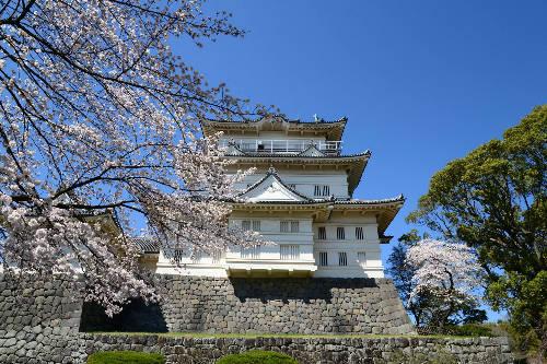 Lâu đài Odawara  Lâu đài nằm ở khu Hakone, được xây dựng vào giữa thế kỷ 15, tòa tháp hiện nay được phục hồi từ năm 1960. Bên trong lâu đài được sử dụng như bảo tàng lưu giữ nhiều tư liệu lịch sử, nếu lên tầng cao nhất, du khách sẽ thấy đường chân trời ở vịnh Sagami trải dài trước mắt. Bao quanh lâu đài trồng rất nhiều hoa anh đào, mận, cẩm tú cầu, diên vĩ... Ảnh: cdn.