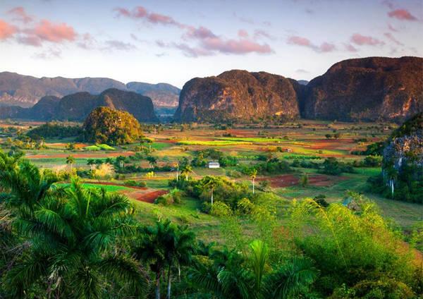 4. Thung lũng Viñales Các điểm tham quan du lịch tự nhiên ở Cuba, bao gồm thung lũng Viñales, nơi trồng các loại cây thực phẩm... là điểm đến du lịch thu hút rất nhiều người leo núi và đi bộ đường dài.