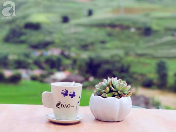 5-quan-cafe-rat-xinh-ma-view-tuyet-dep-nhat-dinh-nen-ghe-khi-den-sa-pa-ivivu-30