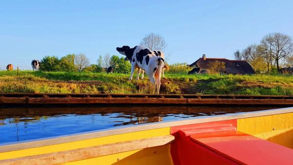 Chiếc thuyền nhẹ nhàng lướt đi dọc theo kênh rạch nhỏ, qua những ngôi nhà lợp mái tranh lâu đời vẫn tồn tại từ thế kỷ 18, mang lại cho bạn cảm giác không thể nào quên.