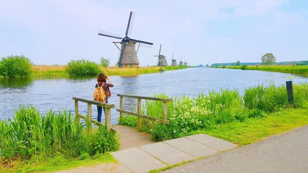7-trai-nghiem-thu-vi-o-ha-lan-dat-nuoc-thien-d4. Ngắm nhìn làng cối xay gió lâu đời nhất Hà Lan: Khách du lịch thông thường hay chọn đến làng Zaanse Schans bởi gần thủ đô hơn, những chiếc cối xay gió lại có màu sắc bắt mắt. Nhưng nếu muốn khám phá những gì nguyên sơ và lâu đời nhất, làng Kinderdijk nên là sự lựa chọn hàng đầu bởi ở đây còn bảo tồn toàn vẹn 19 cối xay gió lâu đời nhất của Hà Lan. Ngôi làng này đã được UNESCO công nhận là di sản văn hóa thế giới vào năm 1997.uong-ivivu-15