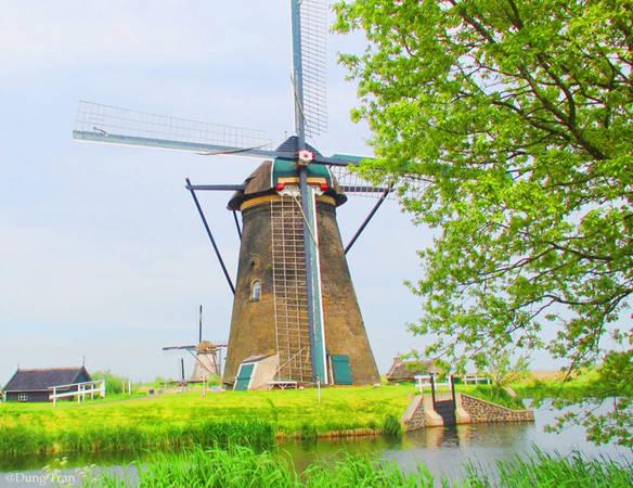 Những chiếc cối xay gió đầu tiên ra đời xuất phát từ nguyên do đất nước Hà Lan nằm dưới mực nước biển đến 30%. Chúng làm nhiệm vụ điều chuyển dòng nước, là những máy bơm dựa vào sức lực của tự nhiên giúp đất nước Hà Lan không bị nhấn chìm dưới mực nước biển.