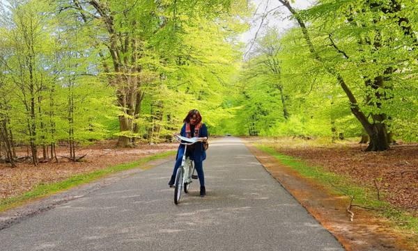 2. Đạp xe hít thở bầu không khí trong lành tràn ngập cây xanh: Một trong những nhiệm vụ trọng tâm mà chính phủ Hà Lan đề ra là bảo vệ thiên nhiên và động vật hoang dã. Các công viên quốc gia với số lượng cây xanh khổng lồ chiếm diện tích khá lớn, trải dài trên khắp đất nước Hà Lan, giao thoa khéo léo với các tuyến đường huyết mạch.