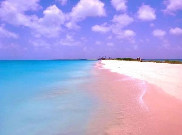 Với khí hậu ấm quanh năm, du khách có thể bơi lặn trong môi trường lý tưởng và yên tĩnh, với những con sóng yên ả từ Đại Tây Dương do được bao bọc bởi rặng san hô.
