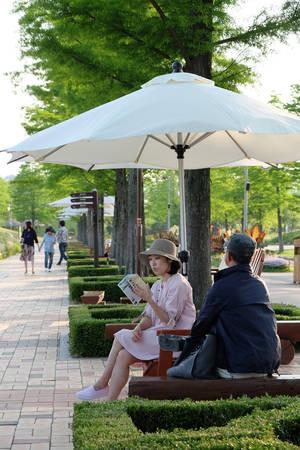 Trái ngược với sự nhộn nhịp của thành phố, khu sinh thái Suncheon lúc nào cũng bình yên.