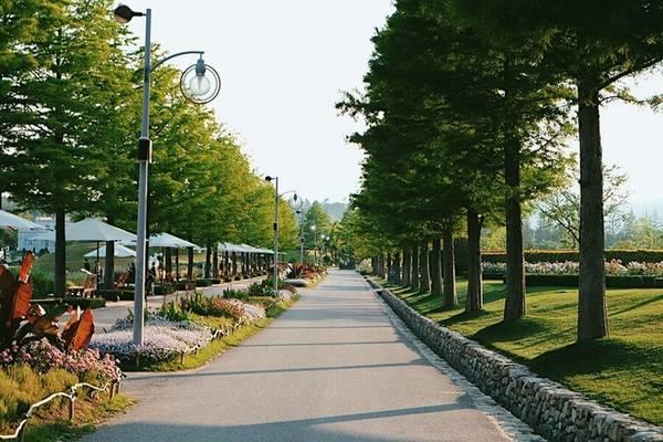 Vườn quốc gia Suncheonnam có diện tích 1,2 km2, gồm 57 cảnh quan khác nhau. Nơi đây phân chia thành nhiều khu vườn với lối kiến trúc và những loài hoa đặc trưng cho từng quốc gia trên thế giới như Mỹ, Anh, Pháp, Hà Lan, Nhật Bản, Trung Quốc, Thái Lan....