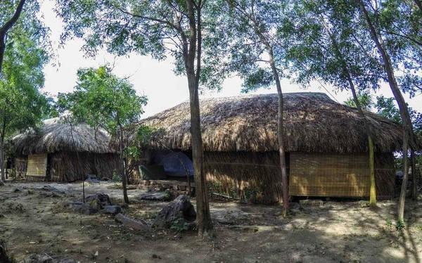 Ảnh những căn nhà gỗ nhìn từ phía ngoài, mộc mạc với lớp lá lợp phía ngoài.