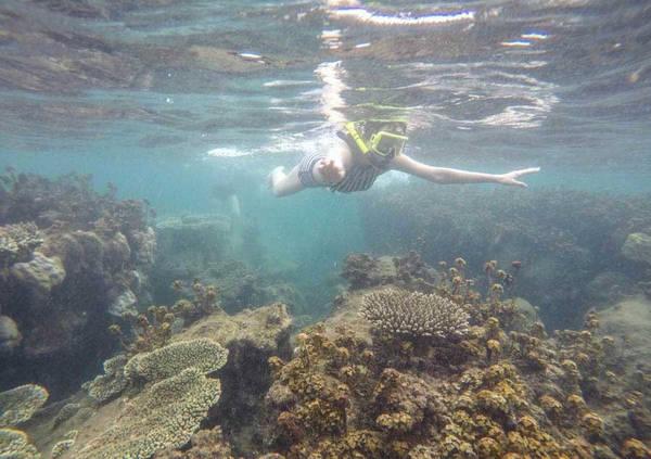 Tôi không nghĩ san hô ở đây đẹp đến thế, hơn cả Cù Lao Chàm, Koh Rong, Koh Samui...