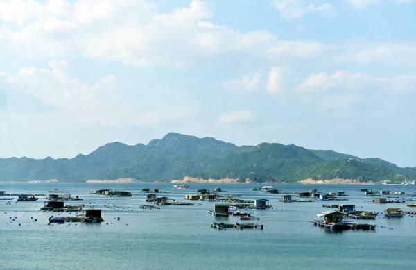 Bè nổi nuôi hải sản của các ngư dân trên đảo - Ảnh: DUYÊN PHAN
