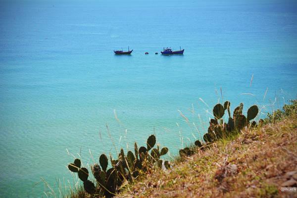 Nếu không có những con thuyền phía xa hay bóng vài người dân địa phương lặn ngụp bắt nhum dưới vách đá, bạn dễ tưởng mình đang ở một nơi hoàn toàn hoang vu hẻo lánh.