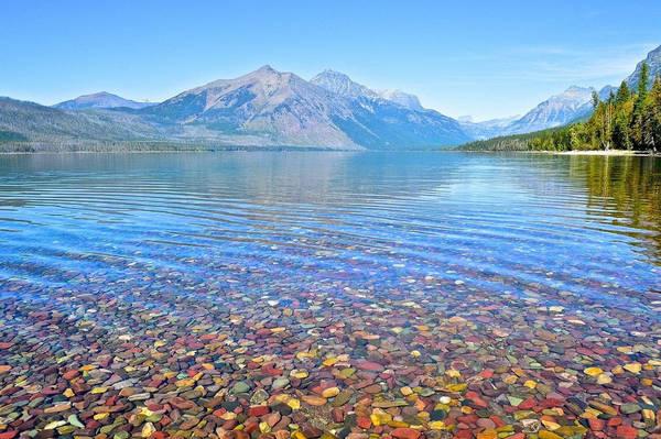 Những tảng đá này có mặt ở khắp nơi trong công viên Glacier, được hình thành ở các thời đại khác nhau. Màu sắc của những viên đá được quyết định nhờ việc chúng chứa sắt hay không và chứa nhiều hay ít. Anh: Cody Wellons/Flickr.