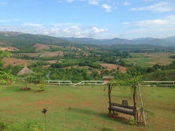 Một khu vườn cà phê nhìn ngắm ngọn đồi phía xa xa ở Pai - Ảnh: Trùng Dương