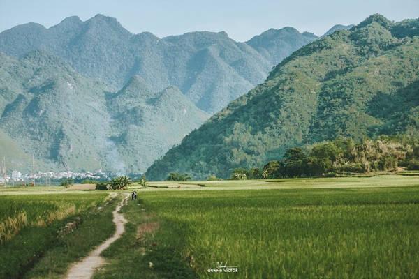 Ngoài ngắm cảnh, trải nghiệm thung lũng mùa lúa chín, những người yêu thích hoạt động ngoài trời sẽ có cơ hội tham gia hành trình chinh phục những dãy núi.