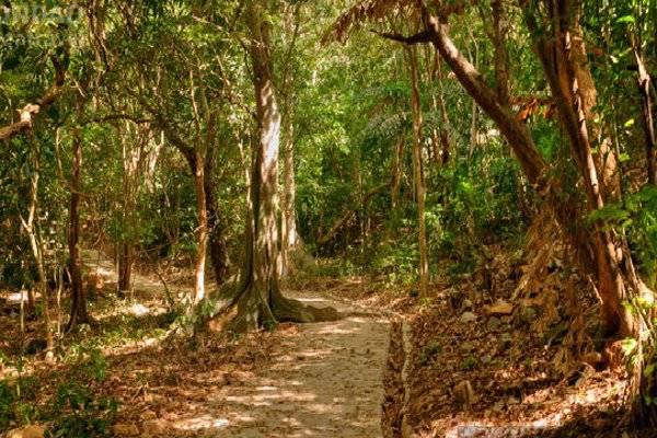 Vườn quốc gia Côn Đảo. Ảnh: VNA