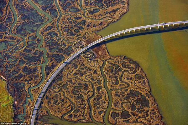 Ở một số khu vực đầm lầy thuộc Andalusia, chính phủ Tây Ban Nha cho xây dựng các cây cầu để xe cộ có thể lưu thông qua lại.