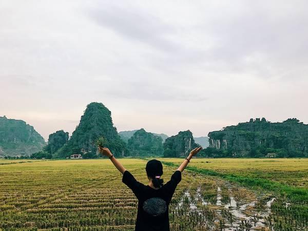Con đường dẫn vào núi Múa là những cánh đồng lúa với xung quanh là núi non hùng vĩ.