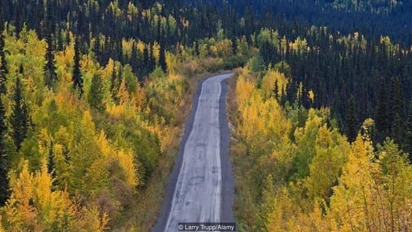 Tại nơi giao giữa hai con sông Yukon và Klondie, phía tây bắc tỉnh Yukon, thành phố Dawson nằm gọn trên dãy Ogilvie. Đây là dãy núi trải dài trên diện tích 2.000 km2 và bảo vệ nhiều động vật hoang dã như tuần lộc, nai sừng tấm và gấu xám Bắc Mỹ. Nếu đi từ Whitehorse, thủ phủ tỉnh, theo đường cao tốc Klondie dài 533 km, có thể mất tới 7 giờ để tới thành phố Dawson.