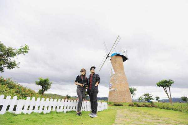 Cối xay gió - biểu tượng của Hà Lan là nơi chụp ảnh không thể bỏ qua trong trang trại. Ảnh: Thái Kim Lê.