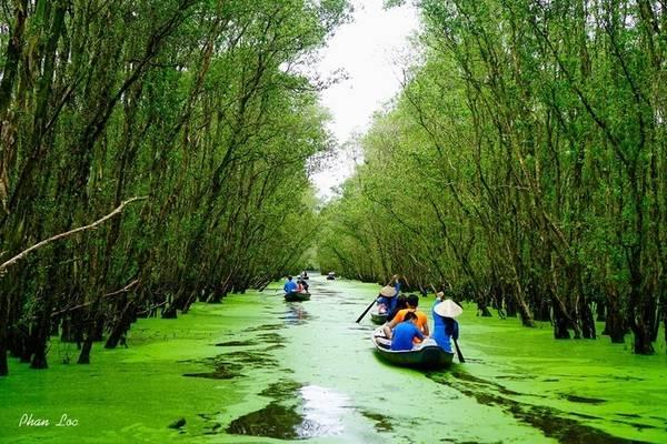 """""""Tuyệt tình cốc"""" Tà Pạ thường nằm trong tuyến đường Trà Sư - Tà Pạ khám phá hai điểm đến nổi bật của An Giang. Thay vì lên đồi để ngắm hồ thì bạn đi thuyền vào sâu trong rừng tràm để trải nghiệm sông nước hữu tình. Vé tham quan Trà Sư trọn gói gồm thuyền máy, thuyền chèo tay chở trọn cung đường là 75.000 đồng một người. Ảnh: Phan Lộc."""
