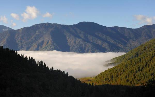 Bhutan cấm xuất khẩu gỗ và sản phẩm từ gỗ, nhằm đảm bảo ít nhất 60% diện tích quốc gia được rừng che phủ. Túi nylon cũng bị cấm sử dụng ở vương quốc xanh - sạch - đẹp này. Ảnh: Mygola.