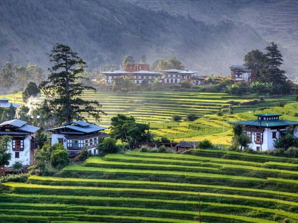 Gói tour tối thiểu ở Bhutan có giá 200 USD một ngày (250 USD vào mùa cao điểm). Trong đó, 65 USD một ngày sẽ được chi cho giáo dục và y tế miễn phí, giảm tỷ lệ nghèo. Ảnh: Travel Triangle.