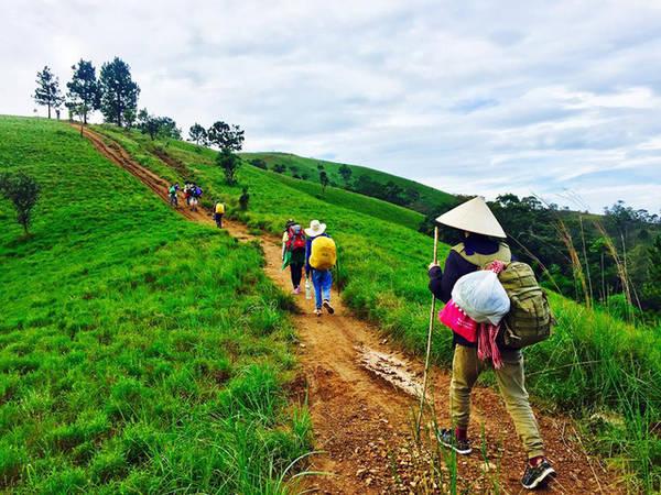 Giới trẻ đi trekking Tà Năng ngày càng nhiều - Ảnh: Duyên Phan
