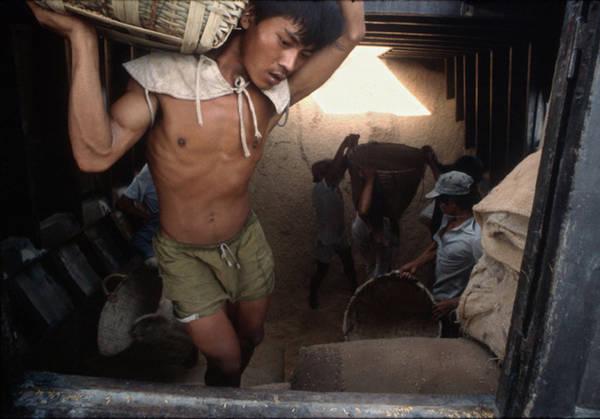 Chợ nổi là đặc trưng của miền Tây. Suốt mấy mươi năm qua, chợ vẫn giữ được nhịp sống đông đúc và sôi động vào những sớm tinh mơ. Một người đàn ông đang khuân vác hàng hóa được nhiếp ảnh gia ghi lại.