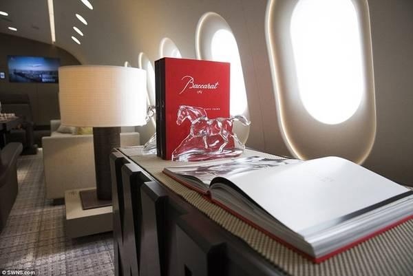 Jacques Pierrejean là một chuyên gia thiết kế nội thất của nhiều hãng bay lớn trên thế giới, ông dành hơn hai năm để hoàn thành chiếc Dream Jet cho khách siêu VIP. Toàn bộ cabin, phòng riêng, khu giải trí được phân bố trên diện tích hơn 200 m2, phục vụ khoảng 40 khách/chuyến. Nếu đây là máy bay thương mại truyền thống, sức chứa của nó lên tới hơn 220 hành khách.