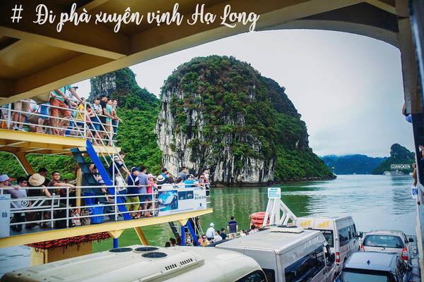 Cát Bà - đảo ngọc của Hải Phòng - chỉ cách trung tâm thành phố cảng 30 km và cách TP Hạ Long 25 km. Từ Hải Phòng, du khách có thể đi phà hoặc tàu cao tốc, rất thuận tiện. Còn nếu chọn đi phà từ Quảng Ninh, bạn có hành trình thú vị xuyên qua những đảo đá của kỳ quan vịnh Hạ Long.