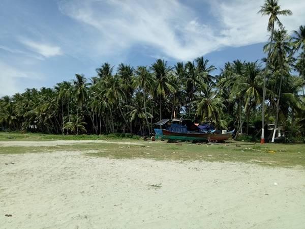 Hàng dừa xiêm ôm ấp hai bên bờ cát, tạo nên vẻ đẹp rất riêng cho biển Tam Hải. Đến đây, bạn sẽ được người dân xã đảo đón tiếp với đặc sản nước dừa xiêm mát lành.