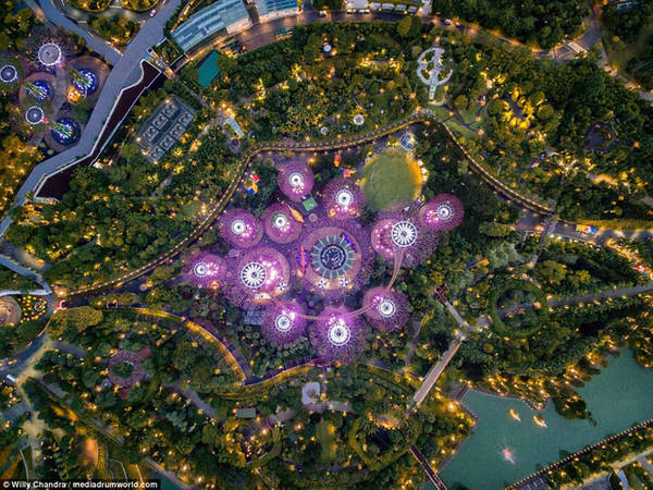 Một trong những khu vui chơi nổi tiếng tại Singapore với màu tím làm chủ đạo