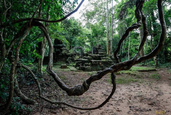 Đến Banteay Kdei, bạn sẽ cảm nhận được sự huyền bí, cổ kính tạo nên một cảm giác thú vị và lạ lùng.