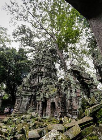 """Không giống như các ngôi đền khác ở Angkor, Ta Prohm dường như rơi vào quên lãng. Ngôi đền trở nên nổi tiếng sau khi là bối cảnh trong bộ phim """"Bí mật ngôi mộ cổ"""" với sự góp mặt của diễn viên nổi tiếng Angelina Jolie."""