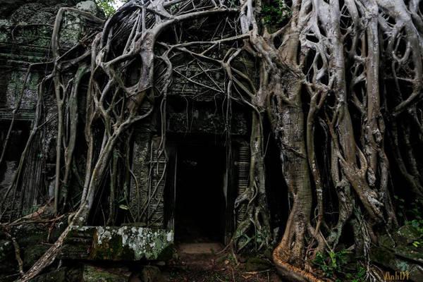 Đến nay, ngôi đền đã đổ nát rất nhiều, nhưng sự điêu tàn của kiến trúc, vẻ rêu phong và những rễ cây khổng lồ dường như càng làm tăng thêm không khí mê hoặc và vẻ đẹp ma mị cho không gian của ngôi đền.