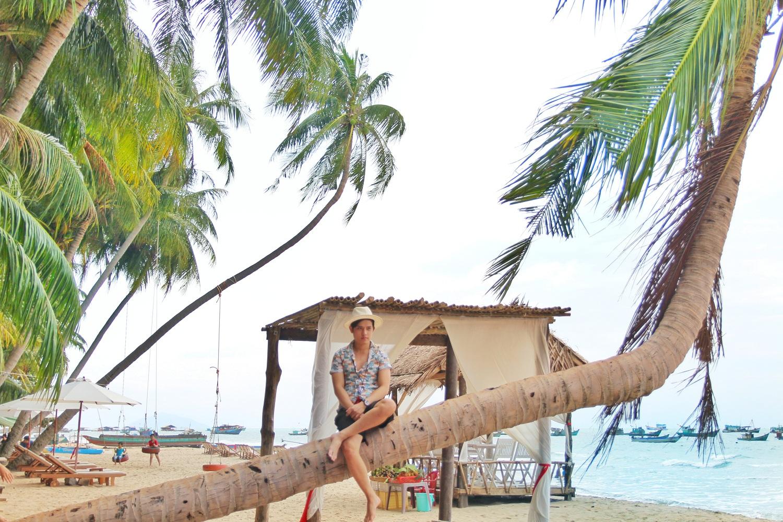 Những cây dừa ngả nghiêng trên bờ biển Bãi Bàng.