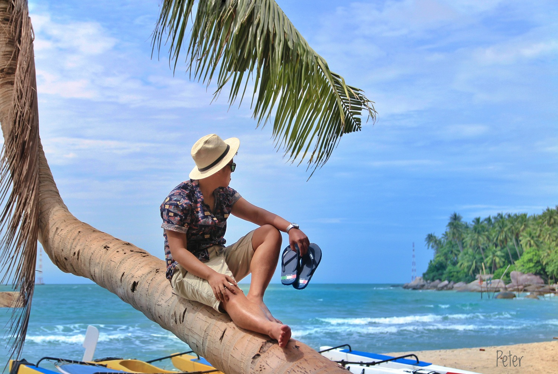 Cây dừa này là tâm điểm của cả bãi biển này, ai ai cũng chụp với nó.
