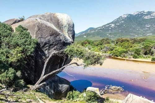 Một khúc sông Tidal, khúc sông này nổi tiếng nhờ dòng nước có màu tím rất lạ