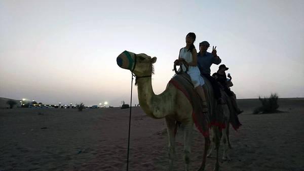 Ngoài hoạt động đi xe trên các cồn cát sa mạc, du khách còn được cưỡi lạc đà, hút shisa, thưởng thức thịt nướng, xem múa bụng trong đêm sa mạc huyền bí, vẽ henna miễn phí. Phương Thúy cho biết ngoài việc đồ ăn Trung Đông không hợp khẩu vị thì mọi thứ ở Dubai đều tuyệt vời.
