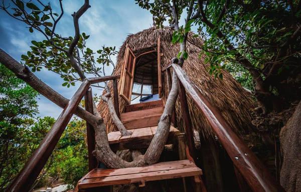 Căn lều tổ chim này nằm trong khu du lịch sinh thái Sao Biển, cách thành phố Cam Ranh khoảng 30 km, thành phố Nha Trang 90 km. Đây là một trong chuỗi 6 tổ chim xây dựng trên triền núi, nhìn thẳng xuống biển, mang tên các loài chim.