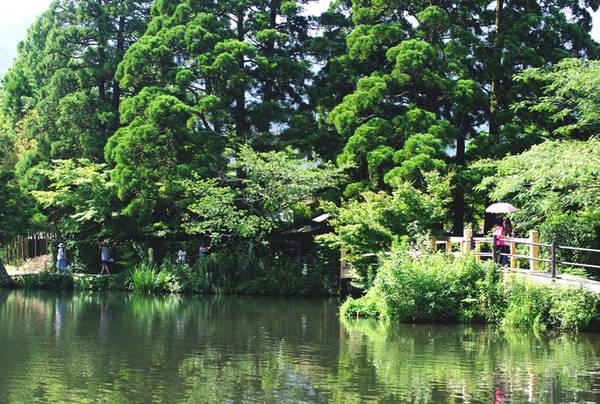 """Kyushu là vùng đất phía nam Nhật Bản, có khí hậu nóng ẩm cùng thiên nhiên màu mỡ, ngoài ra còn là vùng đặc trưng với nhiều suối nước nóng và núi lửa. Du khách đến với Kyushu không thể bỏ qua thị trấn Yufuin ở tỉnh Oita. Trong hình là hồ Kinrinko, bao quanh bởi những thảm cây cỏ tươi tốt, giúp du khách dạo chơi có thể tìm chỗ nghỉ chân mát mẻ bất cứ lúc nào. Lớp vẩy của những con cá bơi lội trong hồ lấp lánh dưới ánh mặt trời buổi chiều, vì vậy hồ có tên Kinrinko nghĩa là """"hồ vẩy cá vàng""""."""