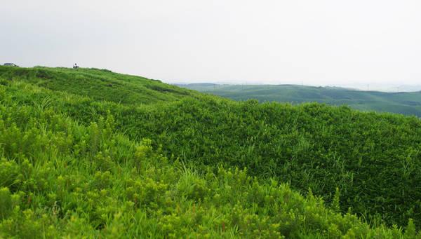 Điểm dừng tiếp theo cho những người yêu màu xanh và mùa hè ở miền nam Nhật Bản là đỉnh Daikanbo. Đây là địa điểm ngắm cảnh, đi bộ leo núi lý tưởng cho phép du khách trải nghiệm thảm thực vật phong phú của địa phương, phóng tầm mắt nhìn ngắm màu xanh bạt ngàn của cây cỏ và cả núi lửa Aso vẫn còn hoạt động từ xa. Du khách thường đi theo nhóm hoặc tour, tiện thuê xe ôtô tới Daikanbo (điểm này không có trạm tàu điện hay buýt).