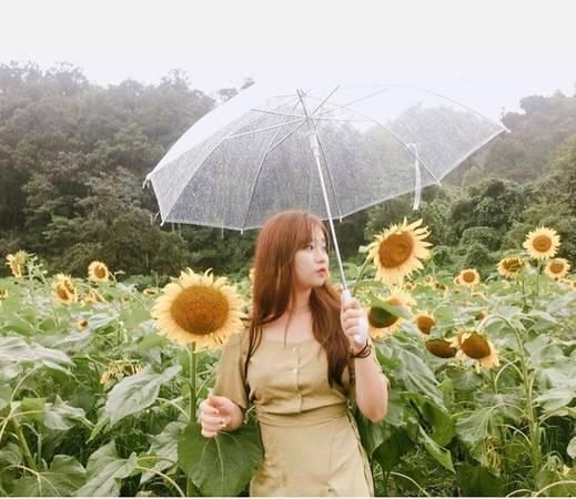 Dù trời mưa, hoa có phần kém sắc nhưng nhờ không khí trong lành ở Yangpyeong, cộng với cảnh quan non nước hữu tình nên nơi này vẫn là điểm đến yêu thích của nhiều người, đặc biệt là nhóm gia đình.